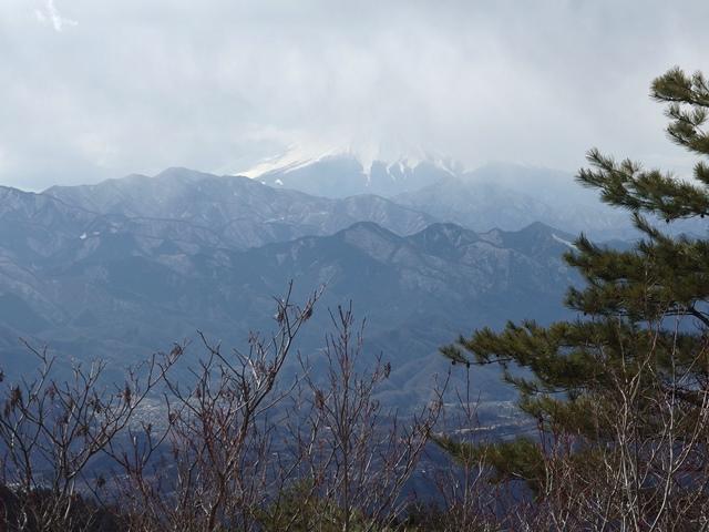 A11P生籐山~.jpg