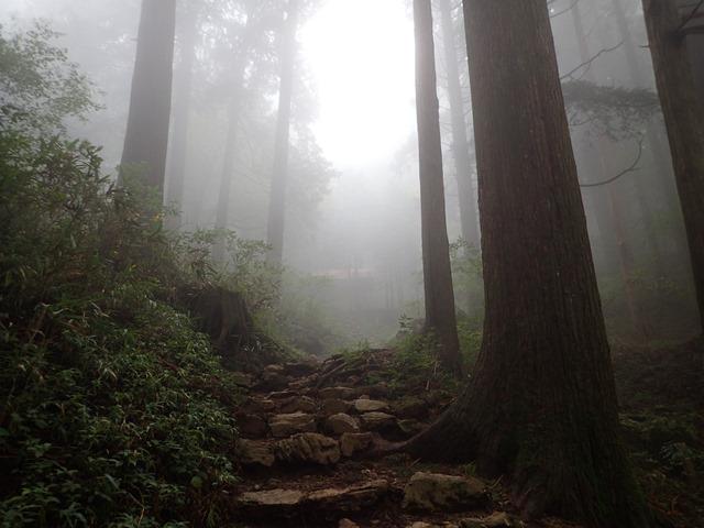 大岳山1P.jpg