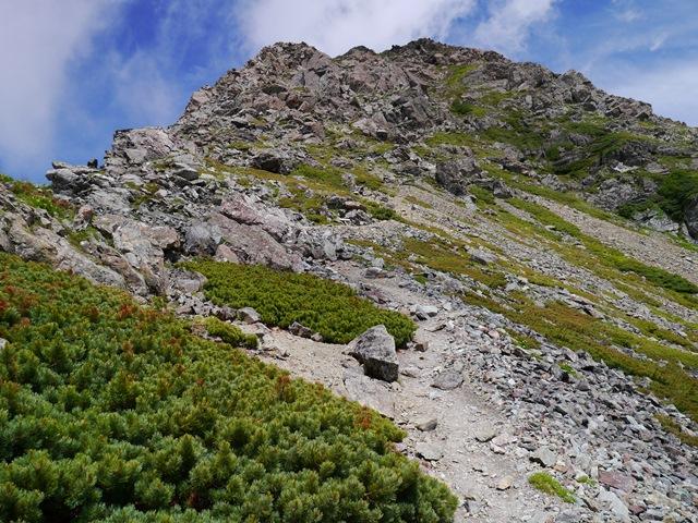 山頂への最後の登り.jpg