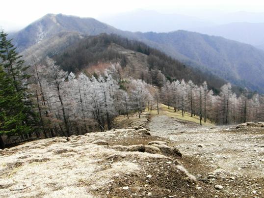 雲取から七つ石.JPG